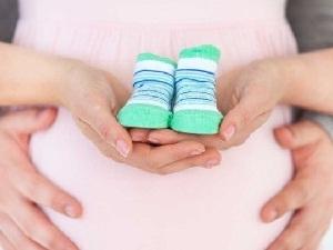Стоимость донорского сперматазоида